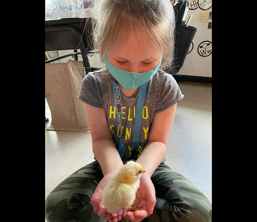 student holding a chick